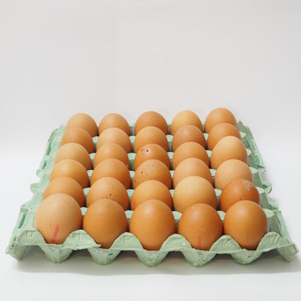 Αυγά Καρτέλα
