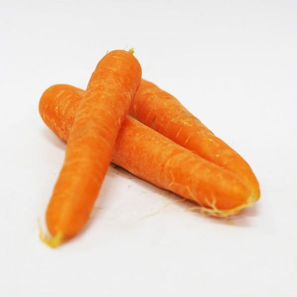 Καρότα Χίου χωρίς φύλλο