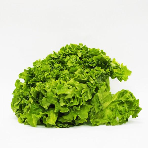 Σαλάτα Λόλα Πράσινη